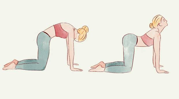 3 вечерних упражнения для здорового, гибкого и сильного позвоночника