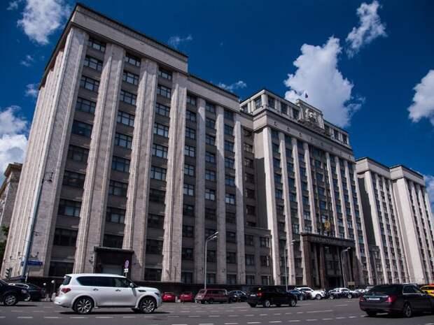 В Госдуме оценили заявление премьера Чехии о версиях взрывов в Врбетице