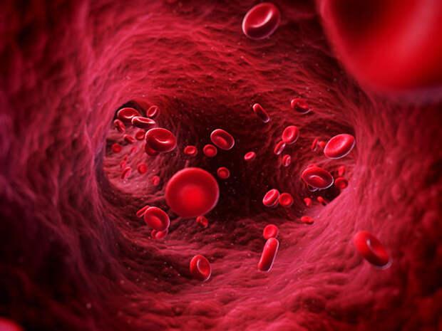 В какой стране от группы крови зависит прием на работу?
