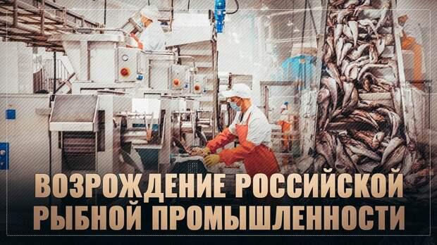 Бум в рыбной промышленности. Огромные заводы строят по всей России