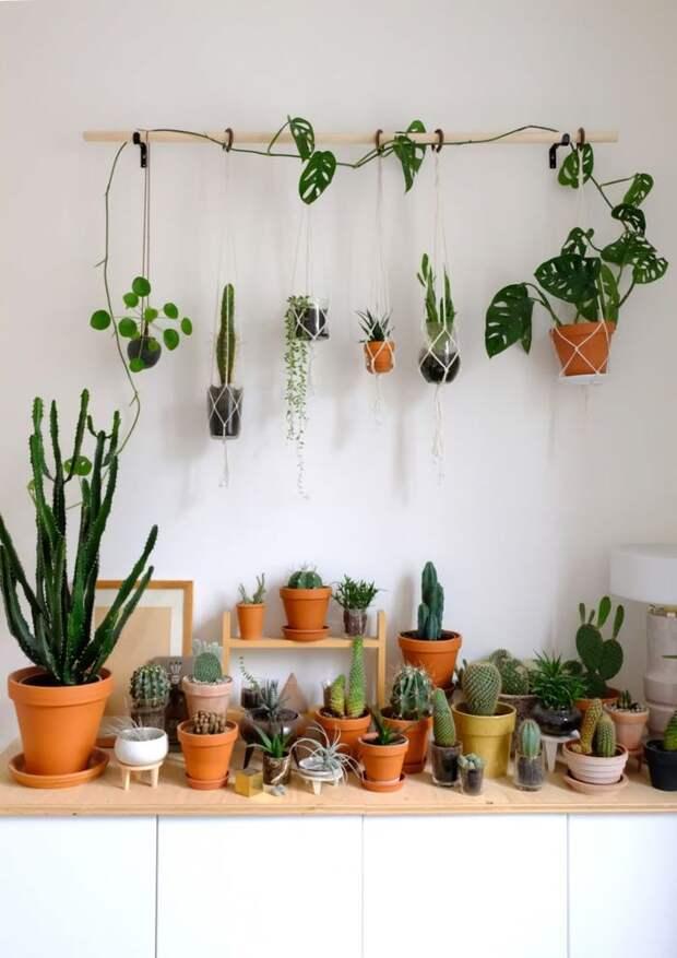 gardenista.com, Maria Bergstrom