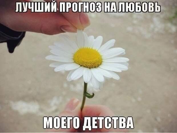 1466534868_06