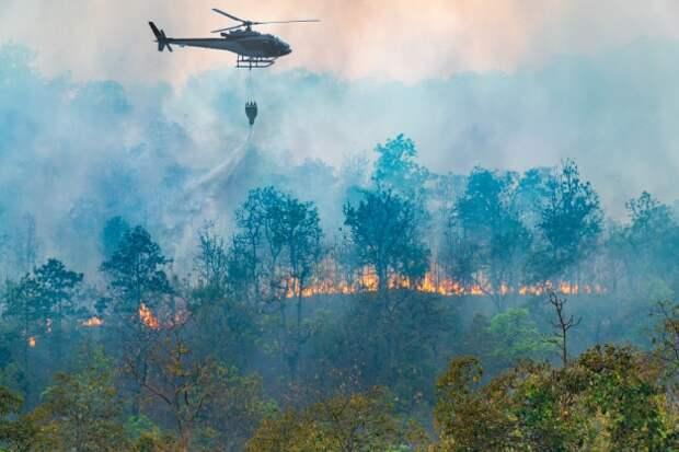Площадь природного пожара на Камчатке увеличилась до 750 га