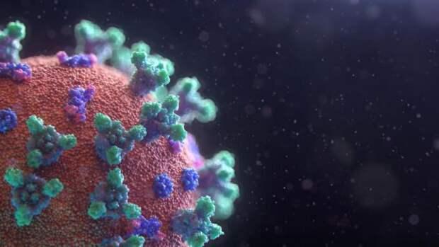 Назальную вакцину от COVID-19 могут зарегистрировать в России в 2022 году