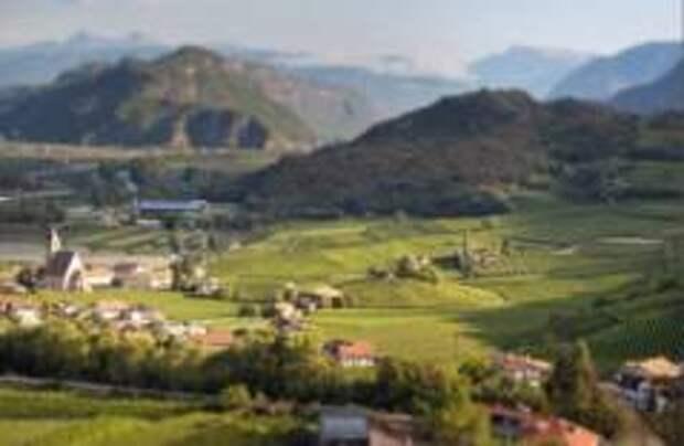 Виноделы уходят в горы