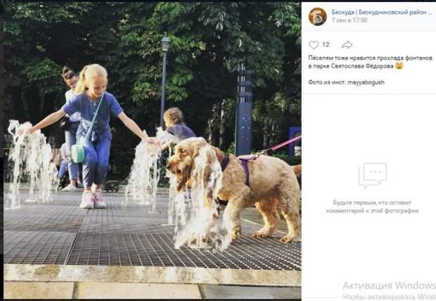 Фото дня: фонтан парка Фёдорова как площадка для собак и детей