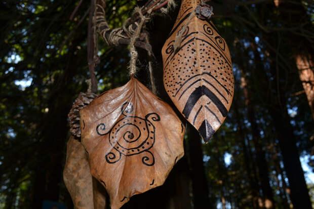 Магические узоры на листьях в лесопарке