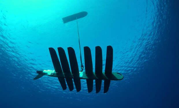 На берегу Шотландии нашли беспилотный катер-дрон. Власти пытаются понять, кому он принадлежит