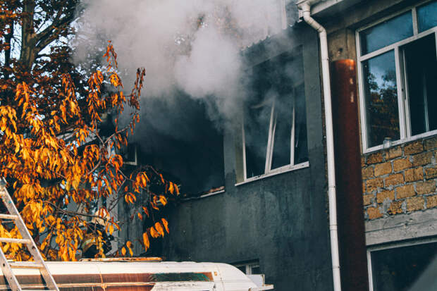 В Севастополе из горящей многоэтажки спасли 12 человек и трёх котов