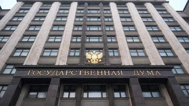 В Госдуме прокомментировали ситуацию с охраной школ в России