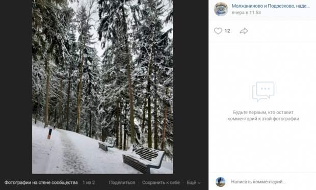 Фото дня: парк «Подрезково» стал декорацией к рождественскому фильму