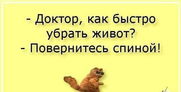 Знакомые переехали в частный дом со своим котом Петровичем...