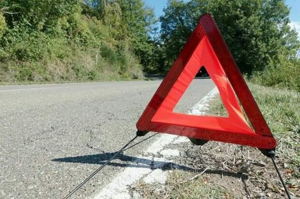 Три человека погибли в ДТП с микроавтобусом в Тамбовской области