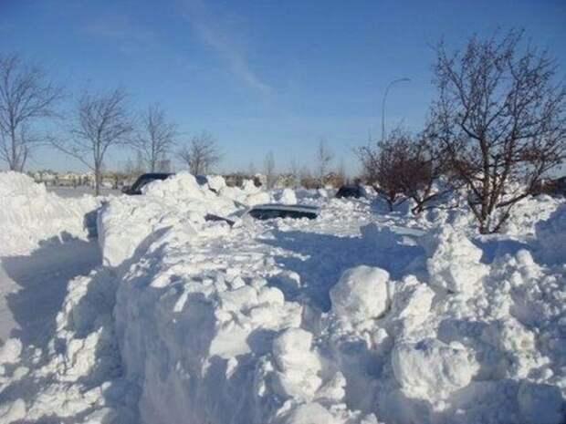 Наконец-то зима наступила (4 фото)