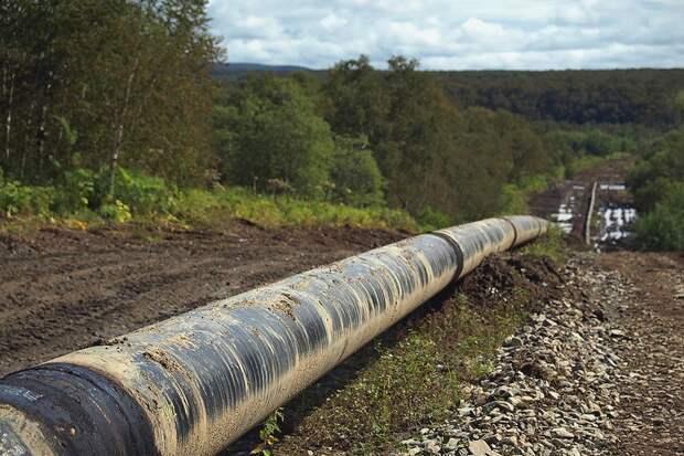 Россия остановила транзит газа по газопроводу Ямал – Европа