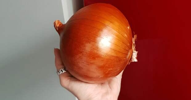 Размер имеет значение! 30+ примеров, когда курьеры привезли гигантские овощи и фрукты