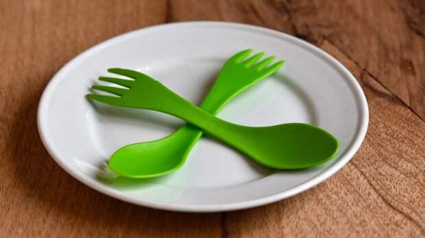 РЭО попросил россиян не использовать одноразовую посуду во время праздника