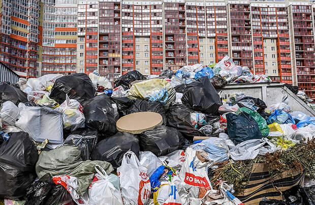 В Бийске ввели режим ЧС из-за проблем с вывозом мусора