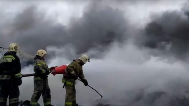 Крупный пожар на заводе древесины полностью ликвидировали в Приморье