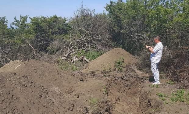 В Крыму нашли вскрытое захоронение времен ВОВ и 26 срубленных деревьев