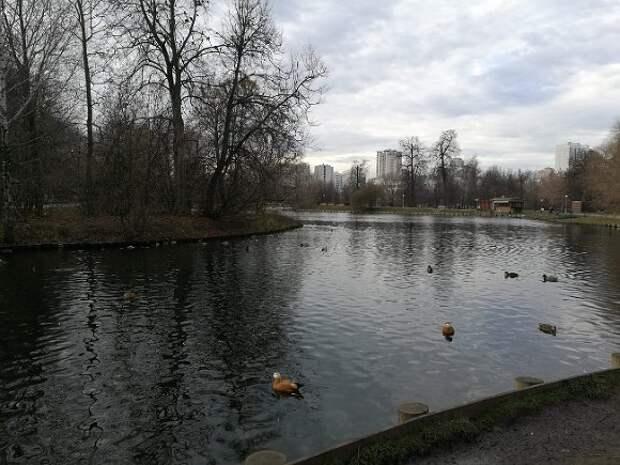 На московских водоемах зимние знаки безопасности заменили на летние
