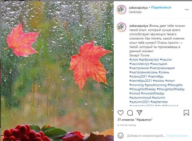 Фото дня: осень на окне в Свиблове