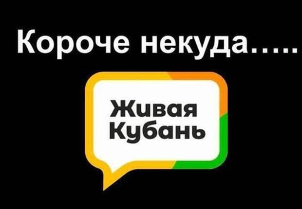 Короче некуда: итоги дня от «Живой Кубани» за 23 апреля