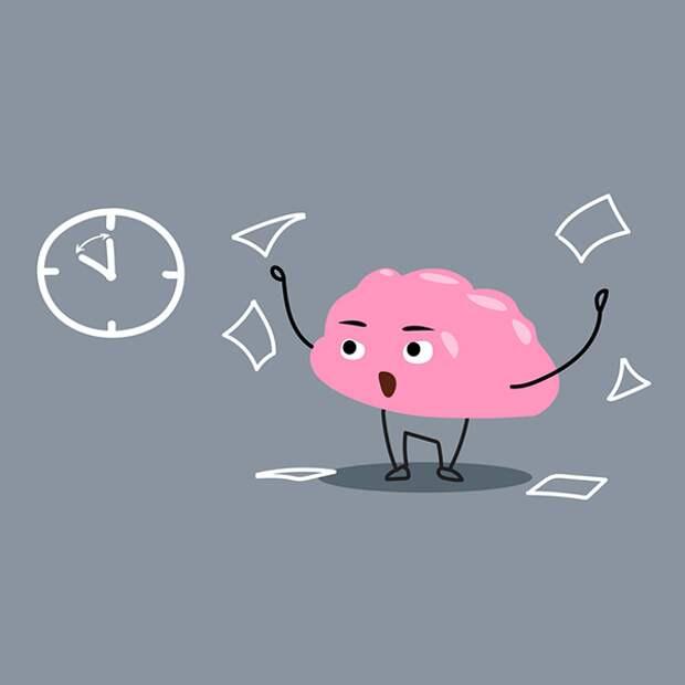 «Мы используем свой мозг всего на 10 %»: правда или миф?