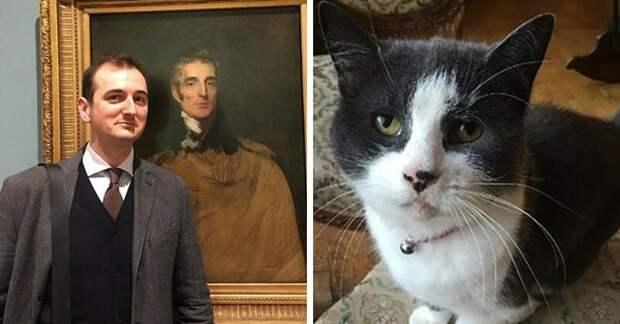 В Британии кот искусствоведа испортил картину XVII века в мире, живопись, животные, искусство, картина, кот