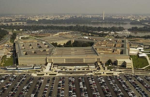 Щенок Пентагона сорвался с цепи