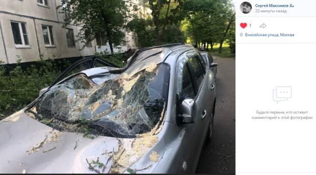 Фото дня: дерево разбило машину на Енисейской