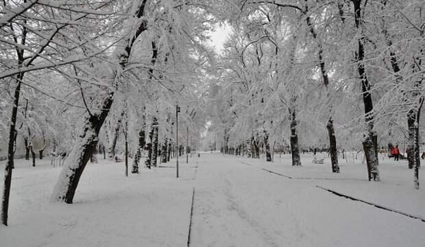 В России предрекли суровую зиму в 2020 и 2021 годах