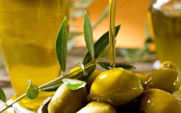 olivki-vetka-maslo-boke