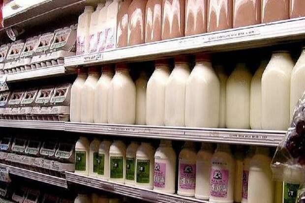 Половина продаваемого молока в Петербурге оказалась фальсификатом