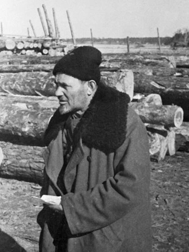 Дед, которого боялся Гитлер. Сидор Ковпак и его партизанская армия