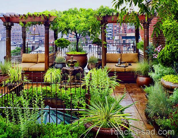 Картинки по запросу Сад на крыше и его оформление