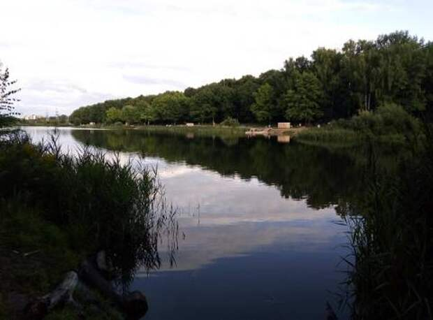 Вандалы разгромили благоустроенный Щелоковский хутор