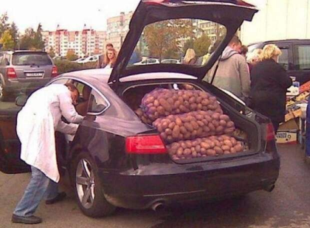 Картошку возить нужно аккуратно где логика?, как перевозить картошку, капуста в багажнике, мастера перевозки, прикол, решил устроить ремонт