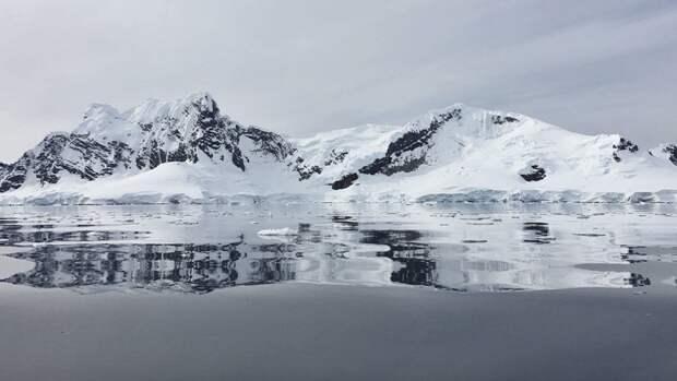 Российские ученые предложили способ восстановления плодородия в Арктике