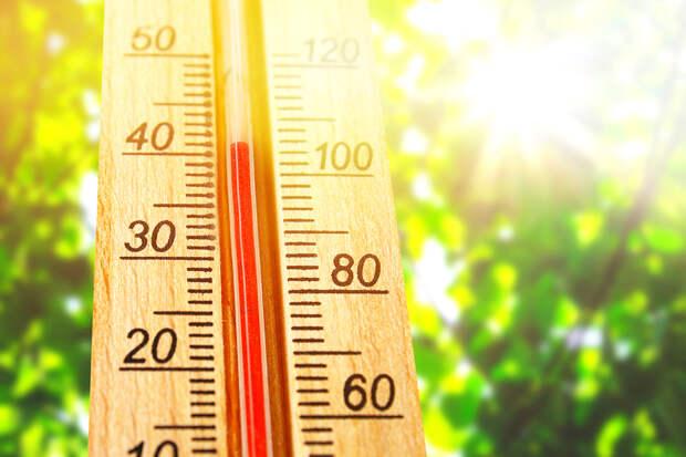 Россиян предупредили о сильной жаре в регионах