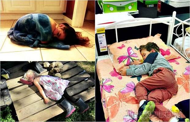 17 позитивных снимков, доказывающих, что уставший человек может уснуть где угодно