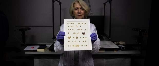 ИИ помог раскрыть одну из тайн свитков Мертвого моря