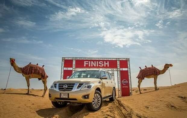 Nissan предложил ввести в арабском мире… верблюжью силу