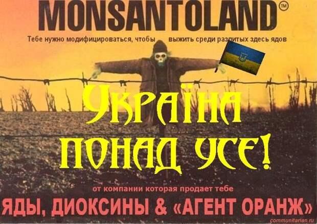 МВФ предлагает Украине распродать земли.