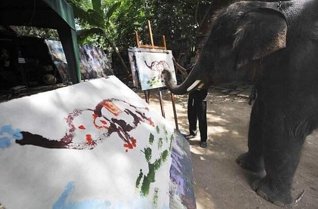 Тайский слон рисует слона. | Фото: vmir.su.