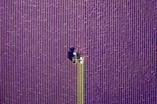 Фотографии дронов