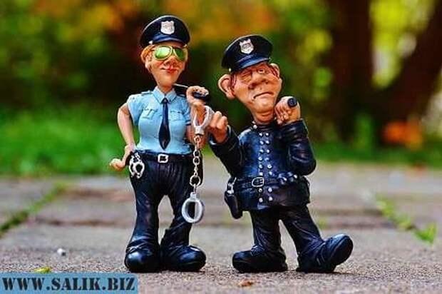 Благодаря чистой случайности полицейским удалось схватить двух воров вместо одного.