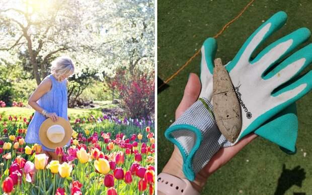 Женщина работала в саду и обнаружила ржавый предмет: он был взрывоопасным