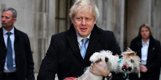 От результатов выборов зависит реализация Brexit, заявил Джонсон
