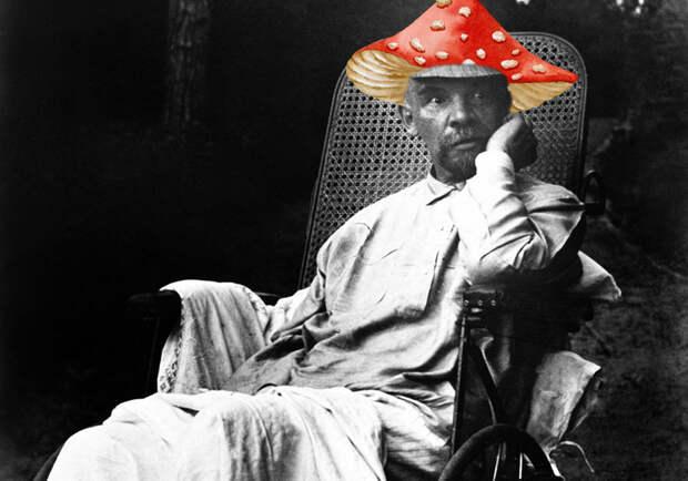 «Ленин-гриб» и советская пропаганда.